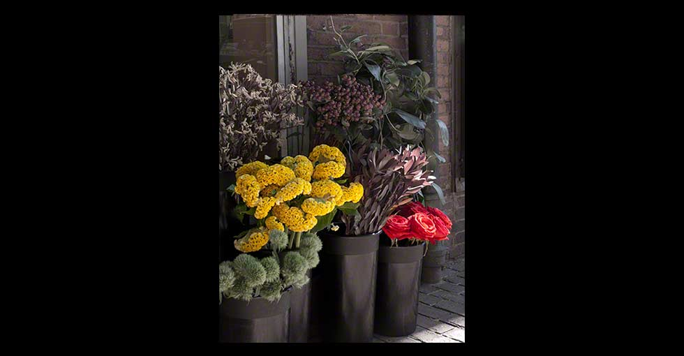 Photo of flower shop flowers in buckets that have been desaturated.