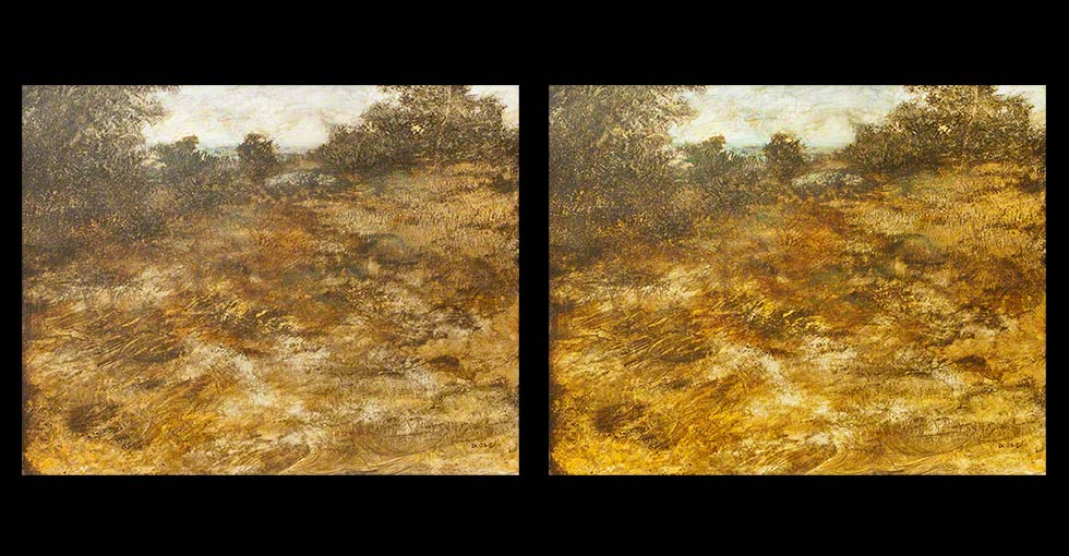 Before & After Oil Painting, The Hill